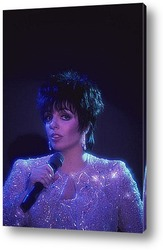 Liza Minnelli-02