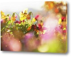 Flower486