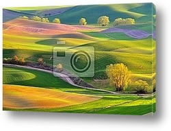 Постер Farmland in Palouse Washington