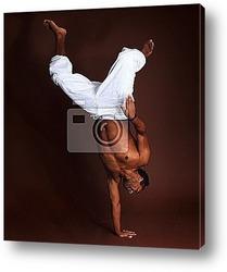 Постер Capoeira