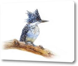 Постер Птица счастья