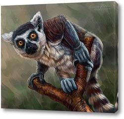 Картина Кошачий лемур