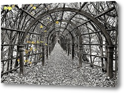 Путь осени