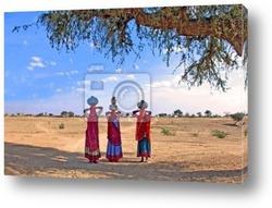 Постер India, thar desert near jaisalmer: women carrying water