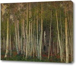 Картина Аспен на северной оправе