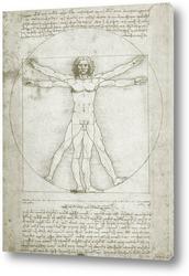 Leonardo da Vinci-15