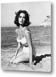 Elizabeth Taylor-14