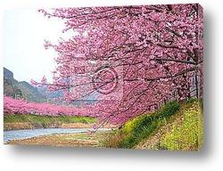 Нежно-розовый фон сакуры