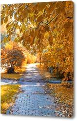 Картина Аллея с красивыми осенним деревьями