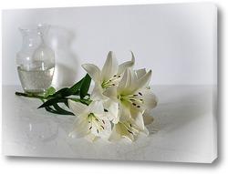 Постер Про белые лилии
