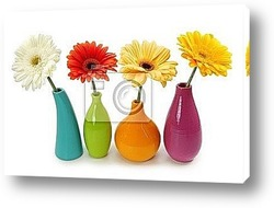 Постер Flowers in vases isolated on white background