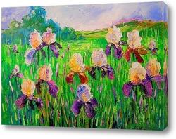 Картина Ирисы в поле