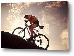 cycle038