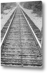 TRAIL022