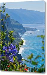 Невероятно красивый вид на северное побережье острова Мадейра, Португалия