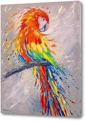 Постер Попугай