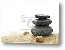 Zen serie - pebble on a white background with green plant