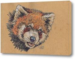 Постер Красная панда