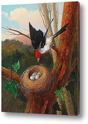 Картина Птица у гнезда