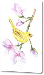 Птица на ветке акварель