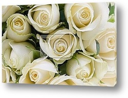 Постер Bouquet of white roses