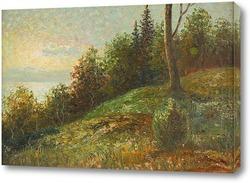 Постер Лесной пейзаж в сумерках