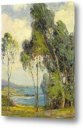 Медно-Хиллз, 1914