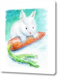 Любитель морковки
