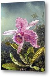 Картина Орхидея (часть картины)