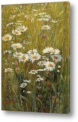 Постер Цветы на лугу