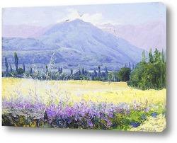 Долина,Чили