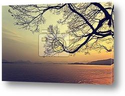Панорамный вид озера на закате