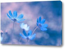 Постер Голубые цветы на нежном фоне