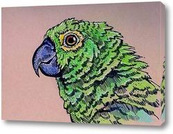 Постер Зеленый попугай