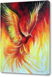 Постер Птица Феникс