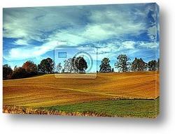 Golden Fields - Champs de blГ©