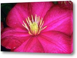 Flower400