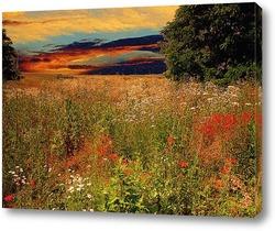Постер летний закат