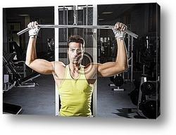 Image of muscle women