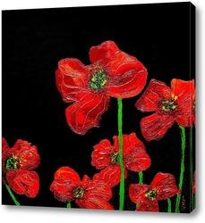 Постер Красные цветы на черном