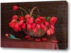 Постер Краснве тюльпаны в корзине