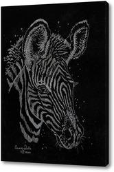 Картина Жеребенок зебры