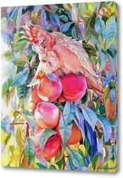 Постер Персиковый поцелуй