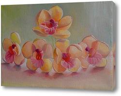 Картина Орхидея