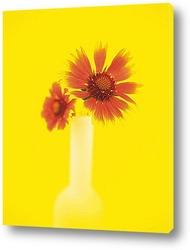 Flower557