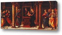 Постер Perugino_035