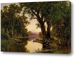 Картина Устье реки в Гоулберн.Виктория