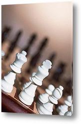 Постер Chess006