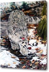 Картина Снежный леопард