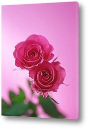 Розовый аромат
